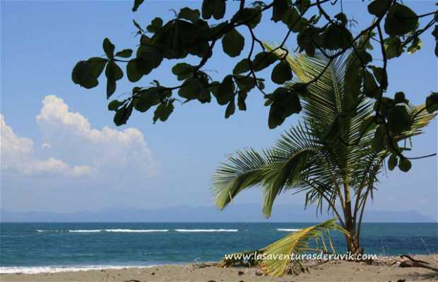 Playa Puntarenitas