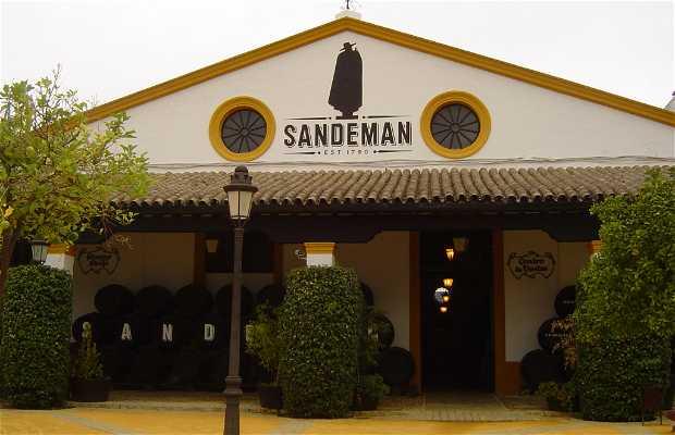 Bodegas Sandeman