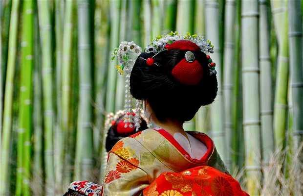 Florestas de Bambú de Arashiyama