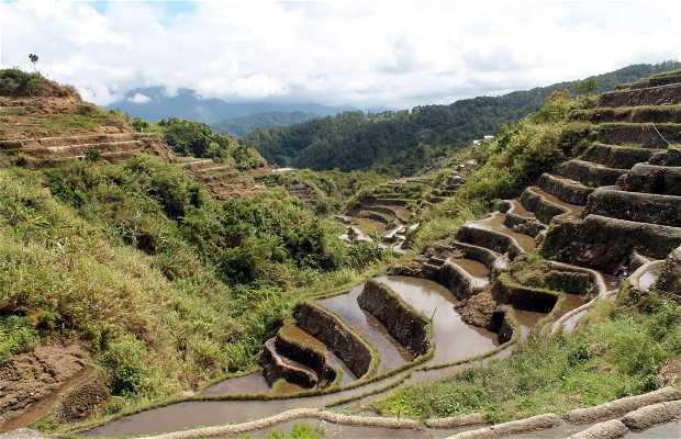 Terrazas de Arroz de Maligcong