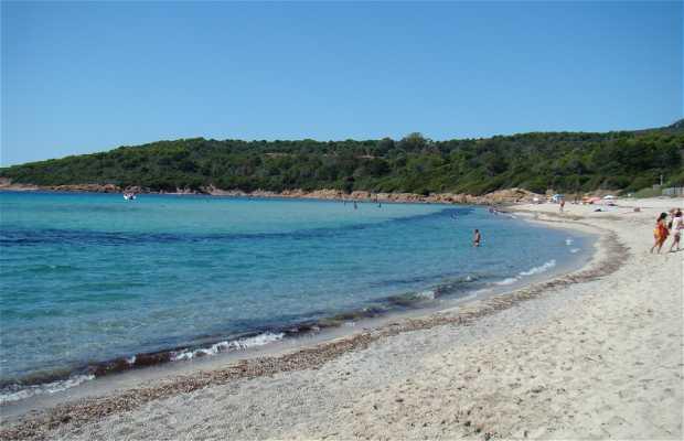 Playa de Capo di Feno