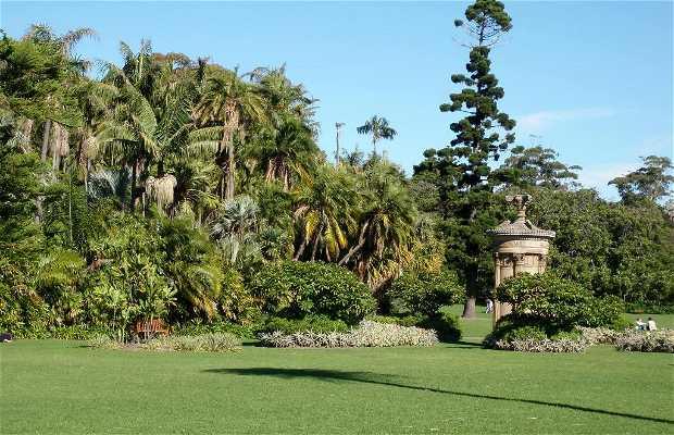 Giardino botanico Reale di Sydney