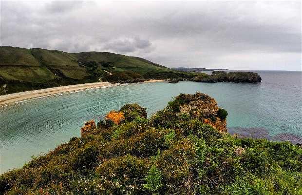 La spiaggia di Torimbia