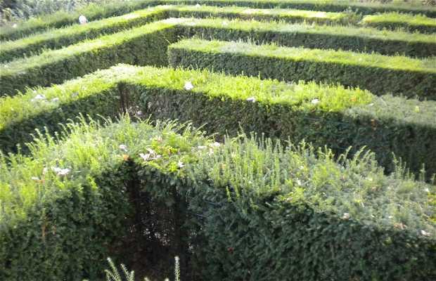 Labirinto de Schönbrunn