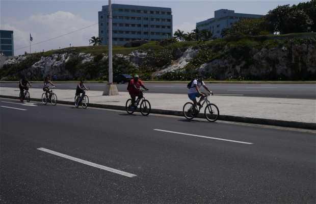 CubaRuta Bikes