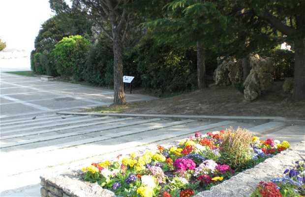 Il Giardino dei Doms ad Avignone
