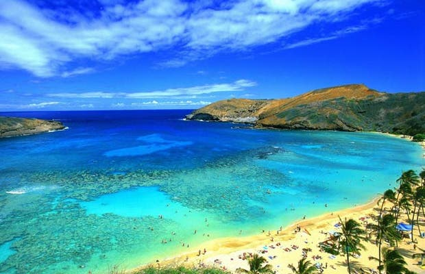 Global Village Hawaii di Honolulu