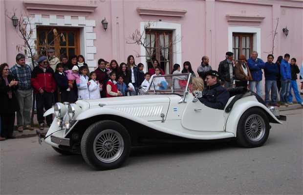 Old Car Exhibition