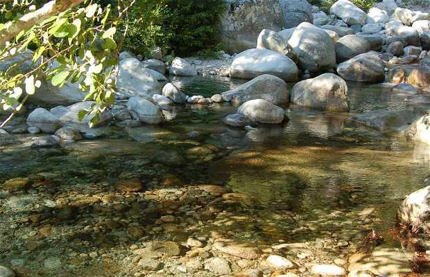 Rio de Bocognano