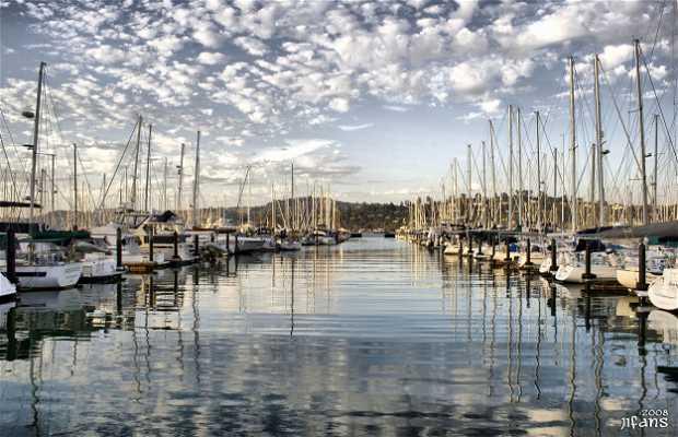 Sausalito Harbour