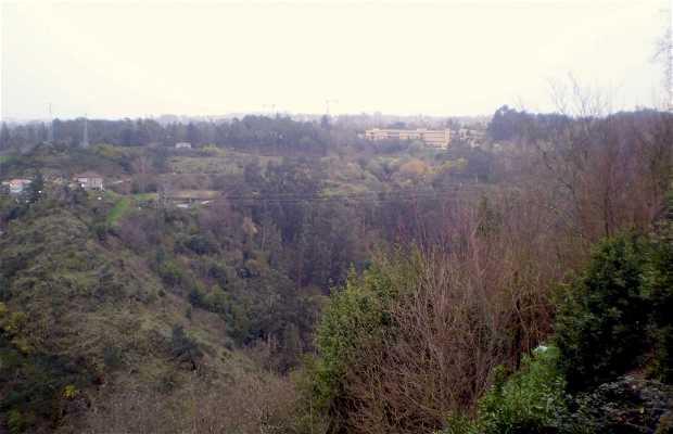 Viewpoint of Vila Real