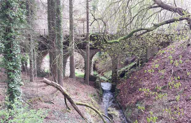 Paseo de Auchenibert