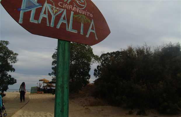 Barraquinha Playa Alta