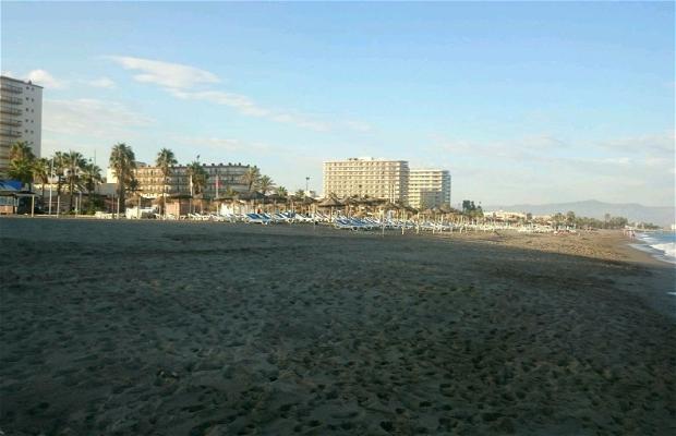 Praia Moliere