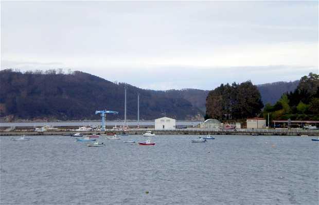 Port de Vicedo