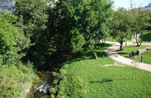 Río Gafos
