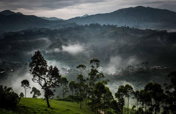 Nord-Kivu