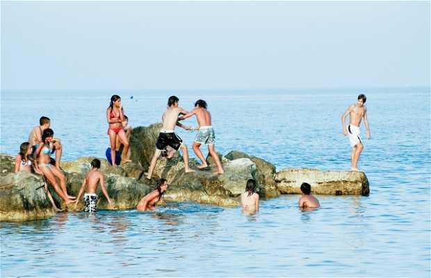 Porto Recanati Beach