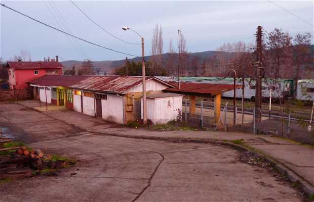 Talcamavida