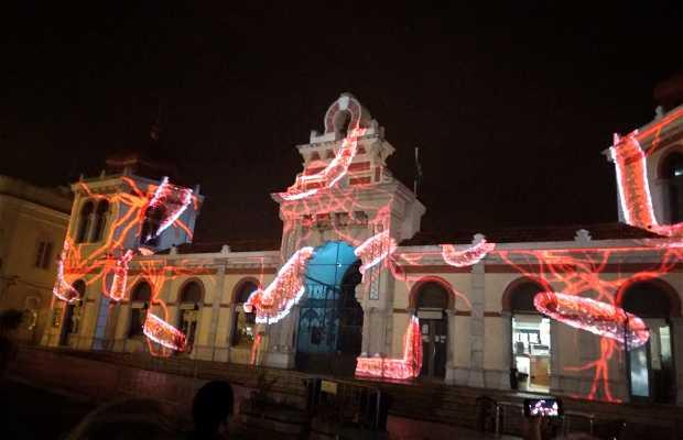 LUZA Festival