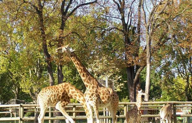 Parque Zoológico de París