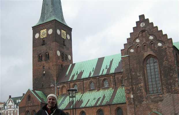 Århus Domkirke - Catedral de Aarhus