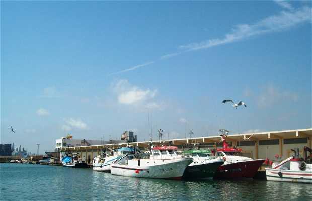 Port of Castellón