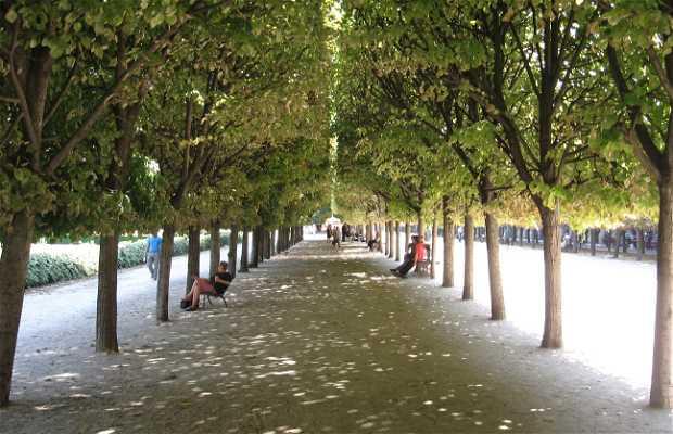 Jardín del Palacio Real