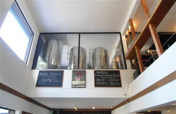 Cervecería Latitud Sur