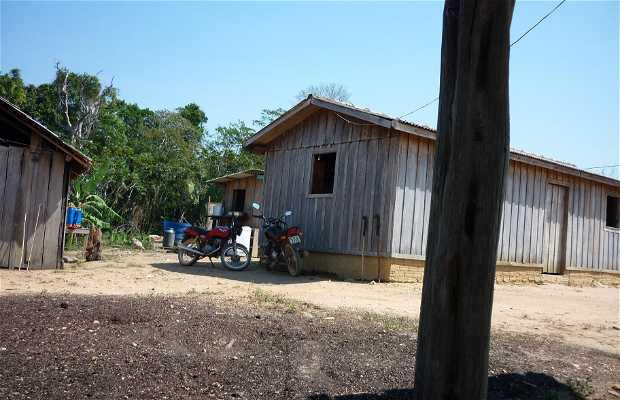Vivir con Agricultores en Rondonia