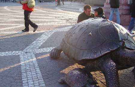 Les tortues de bronze