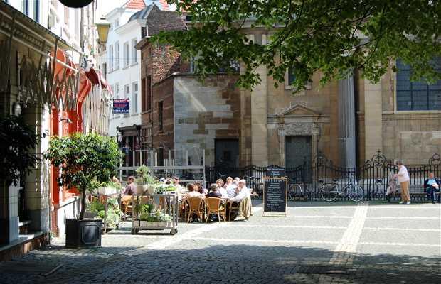 Wijngaard Straat