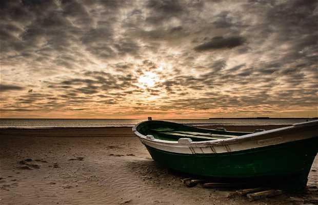 Praia da Malvarrosa