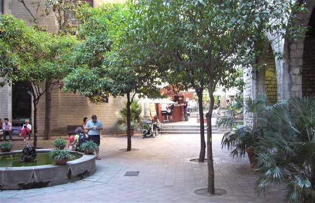 d'estiu ( de verano) Café