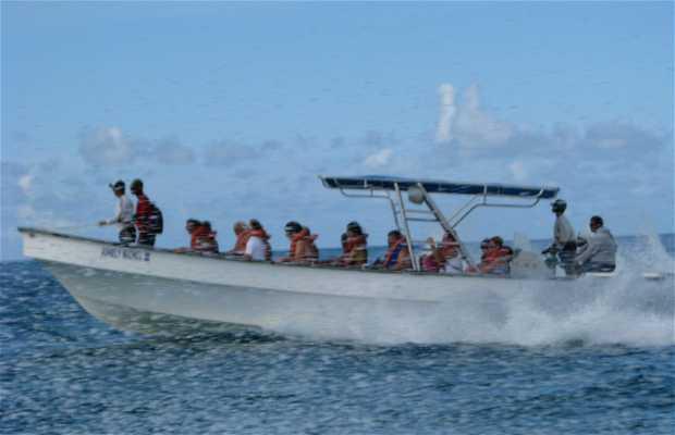 Excursions Pedrito Punta Cana