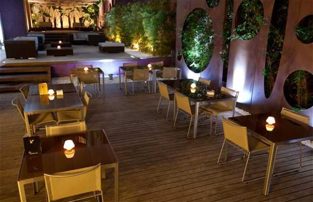 Terraza Catedral Lounge En Barcelona 1 Opiniones Y 2 Fotos