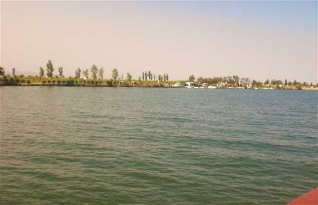 Paseo en barco por el Delta del Ebro