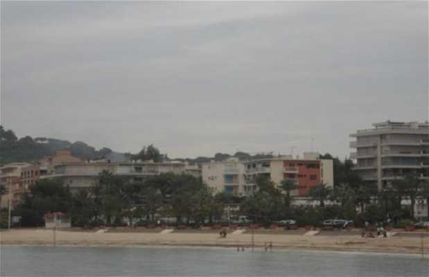 La plage Albert I