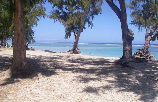 Playa del Hermitage