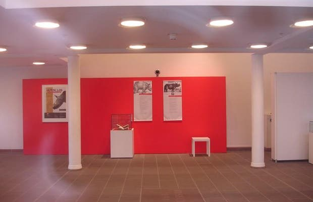 Museo di Offenbourg