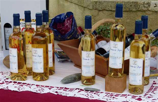 Mercado ecológico y artesanal Tillac