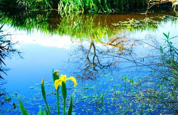 Reserva Ecológica de San Isidro