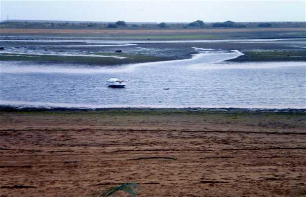 Parque Natural de las Marismas de Isla Cristina