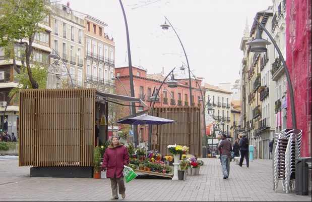 Plaza de Tirso de Molina