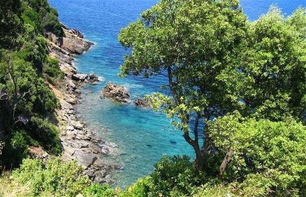 Isola D'Elba, Scoglio Della Paolina