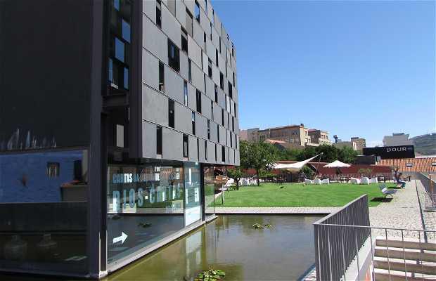 Museo del Duero