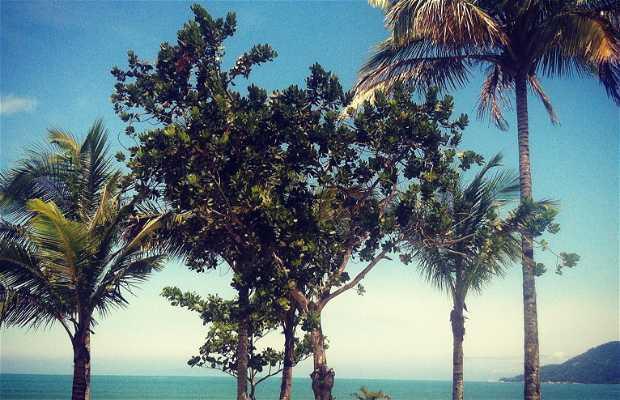 Playa de la Lagoinha