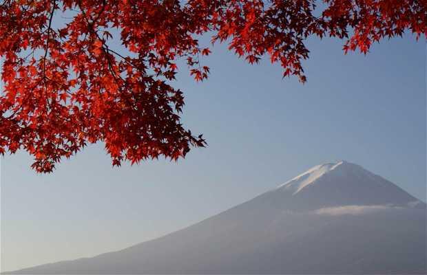 Monte Fuji - Fuji-san