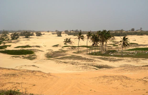 Landscapes of Senegal