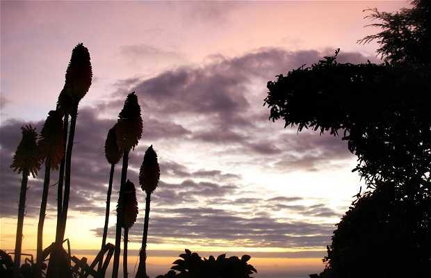 Dawn in Pedreira